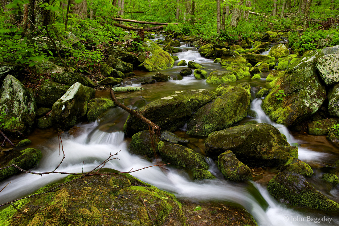 Fine art photo by John Baggaley of moss covering large rocks in South River, Shenandoah National Park, Virginia.