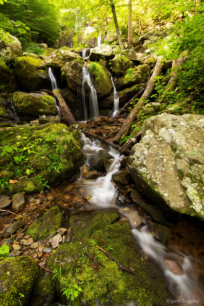 Photo by John Baggaley of Dark Hollow Falls (waterfall) in the summer in Shenandoah National Park, Virginia.