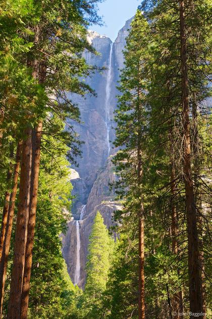 Falls Between the Trees