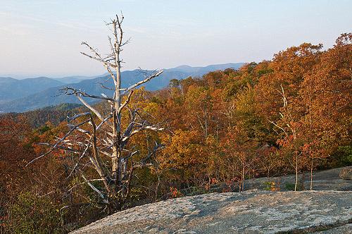 Fall sunrise on the mountain