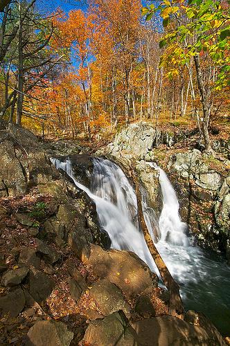 Autumn at Rose River Falls