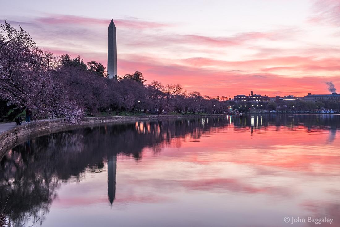 Pink Rising Over Washington