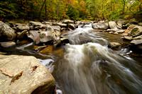 Fall Color at Rock Creek