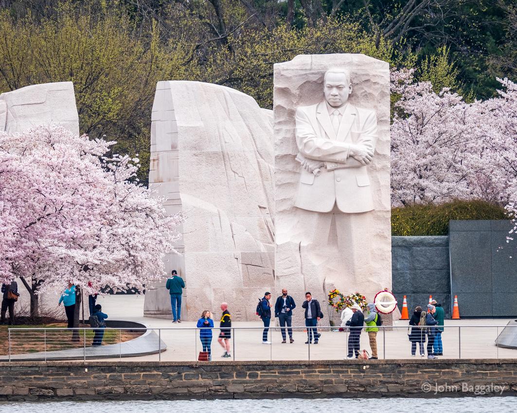Springtime at the Martin Luther King Jr. Memorial