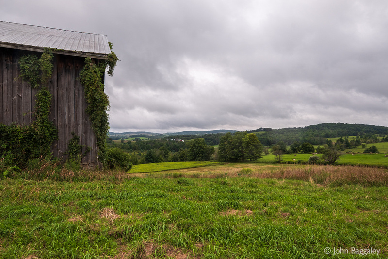 Heavy Clouds and Barn with Ivy