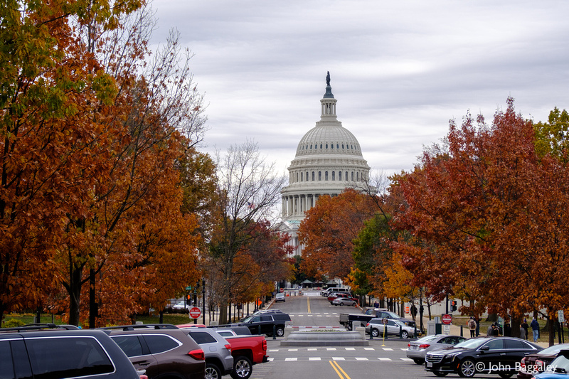 Fall color at the Capitol 1