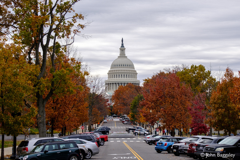 Fall color at the Capitol 2