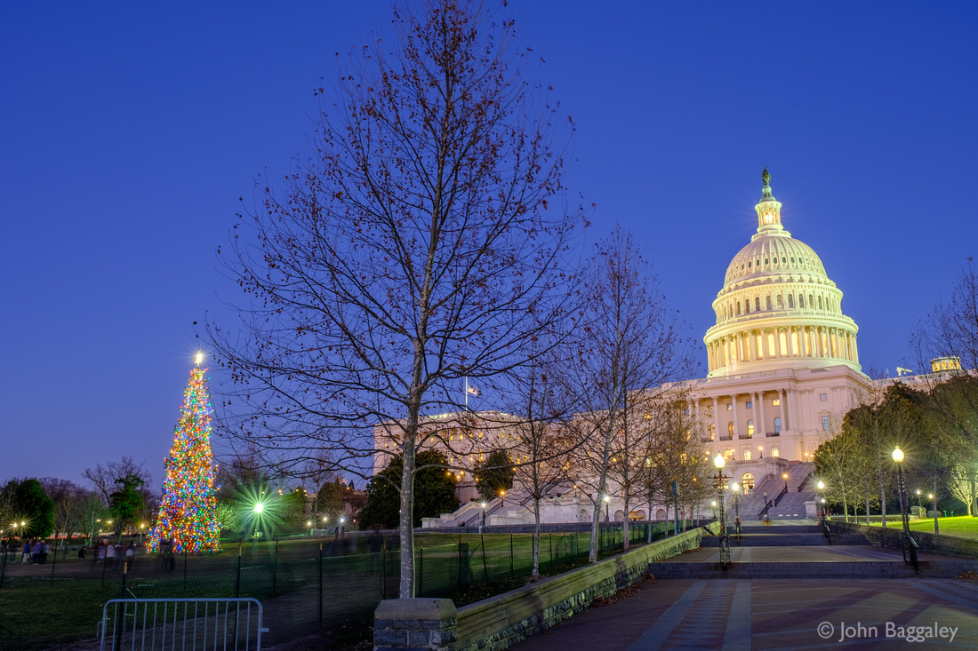 2018 Capitol Christmas Tree