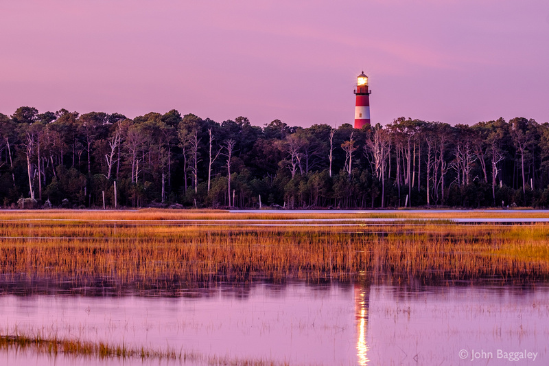 Assateague Lighthouse and Forest