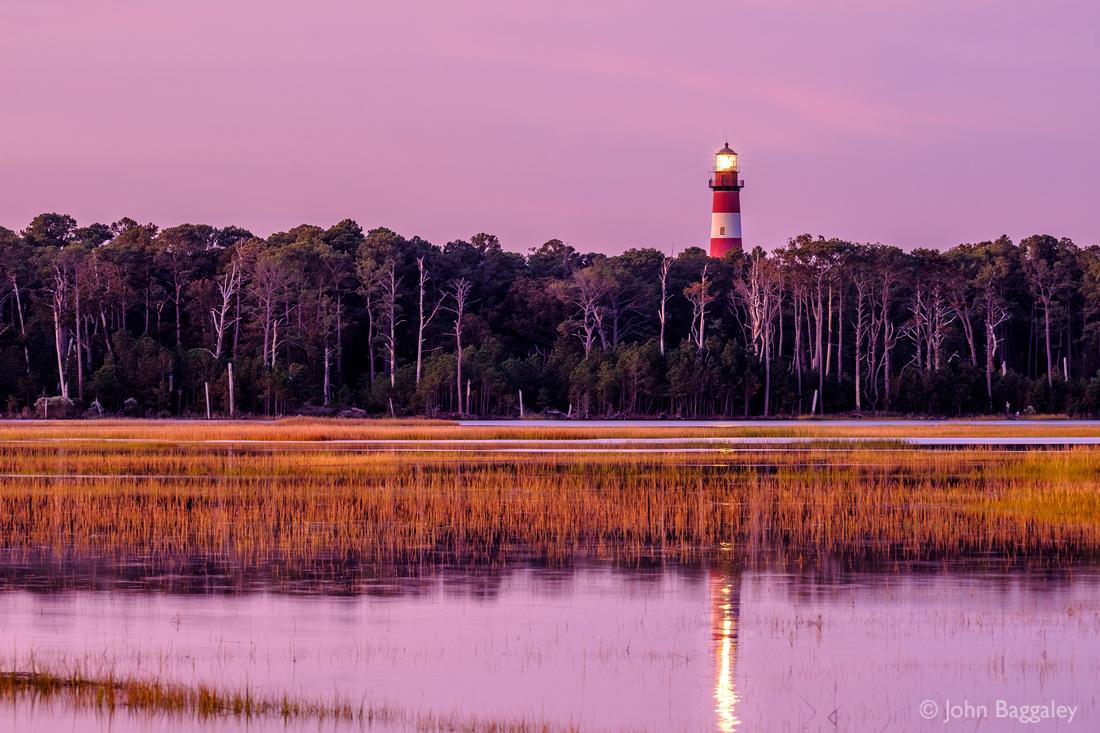 Assateague Lighthouse and Forest