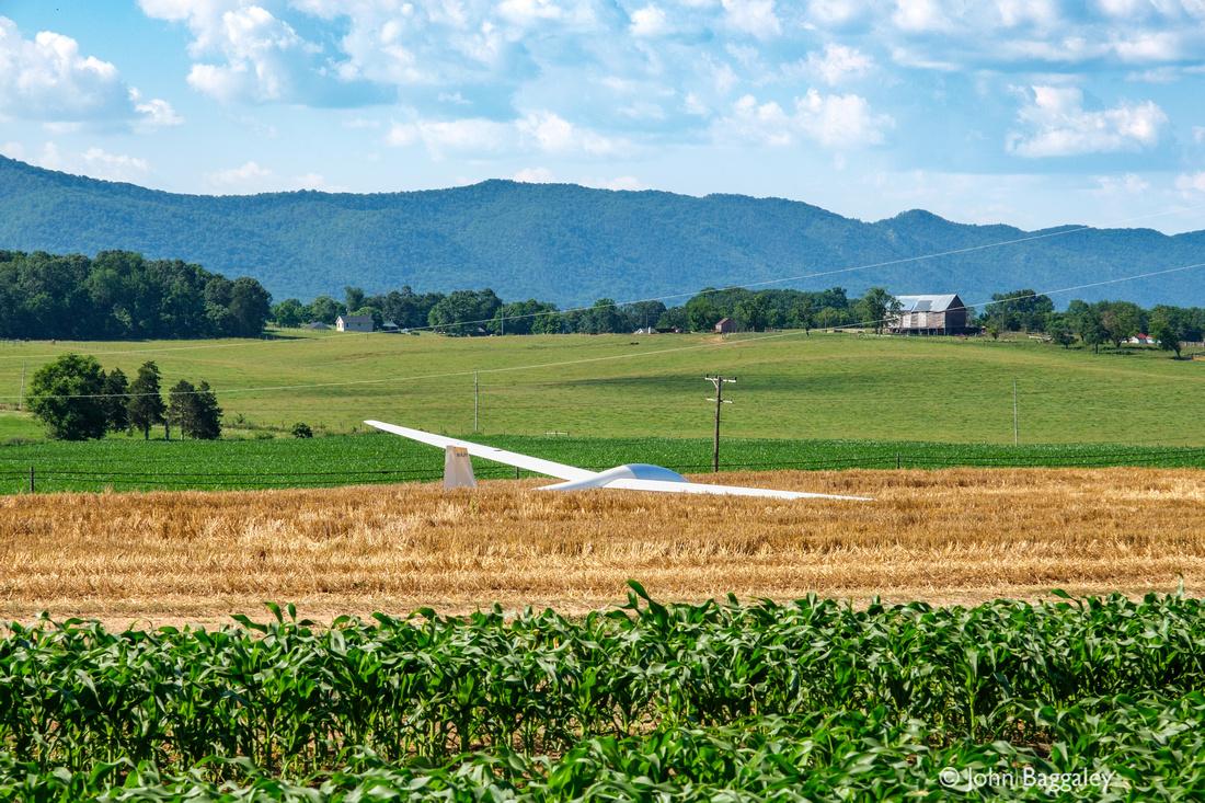Glider in a Cornfield