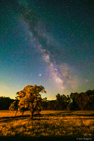 The Milky Way and the Meadow