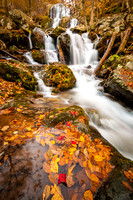 Autumn at Dark Hollow Falls