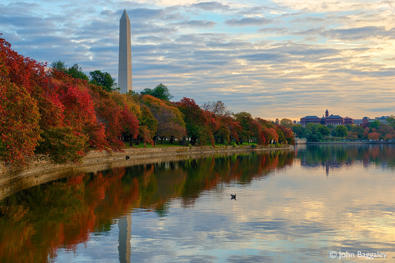 Washington Monument and Fall Foliage