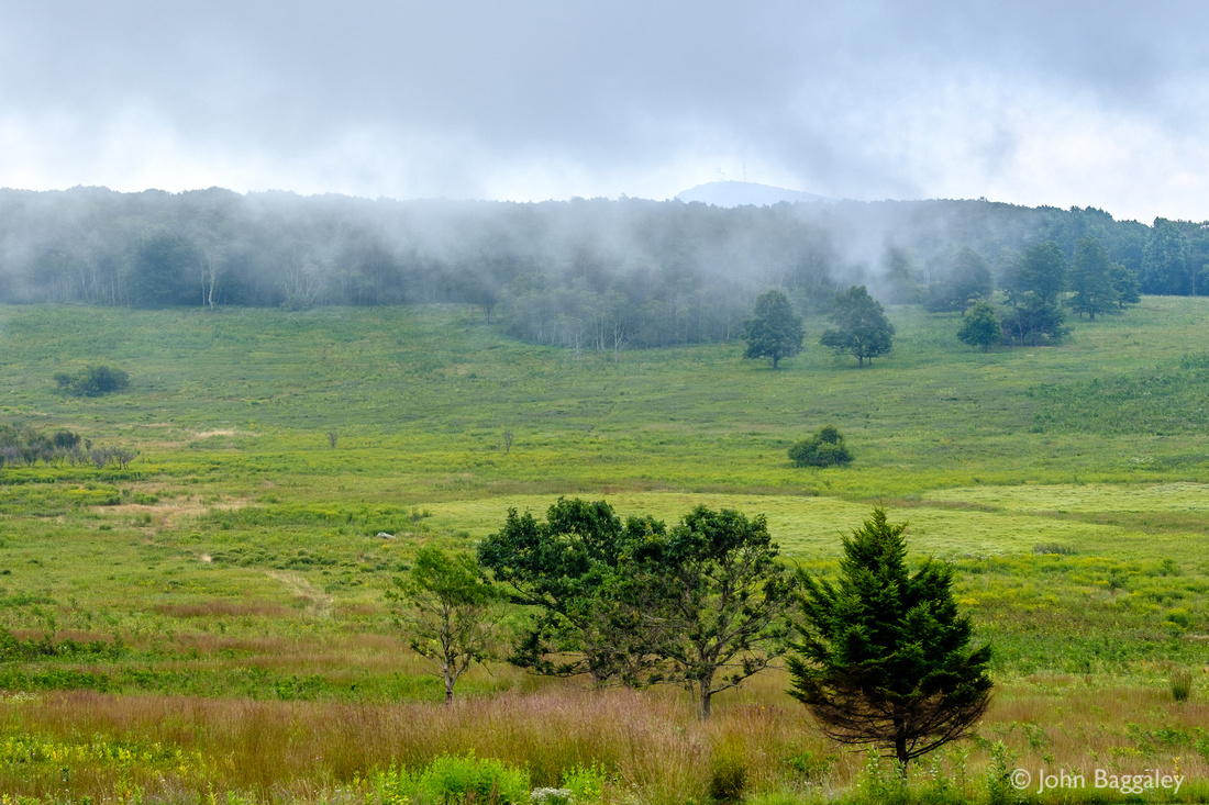 Low Clouds Over Big Meadows