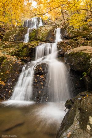 Misty Golden Falls