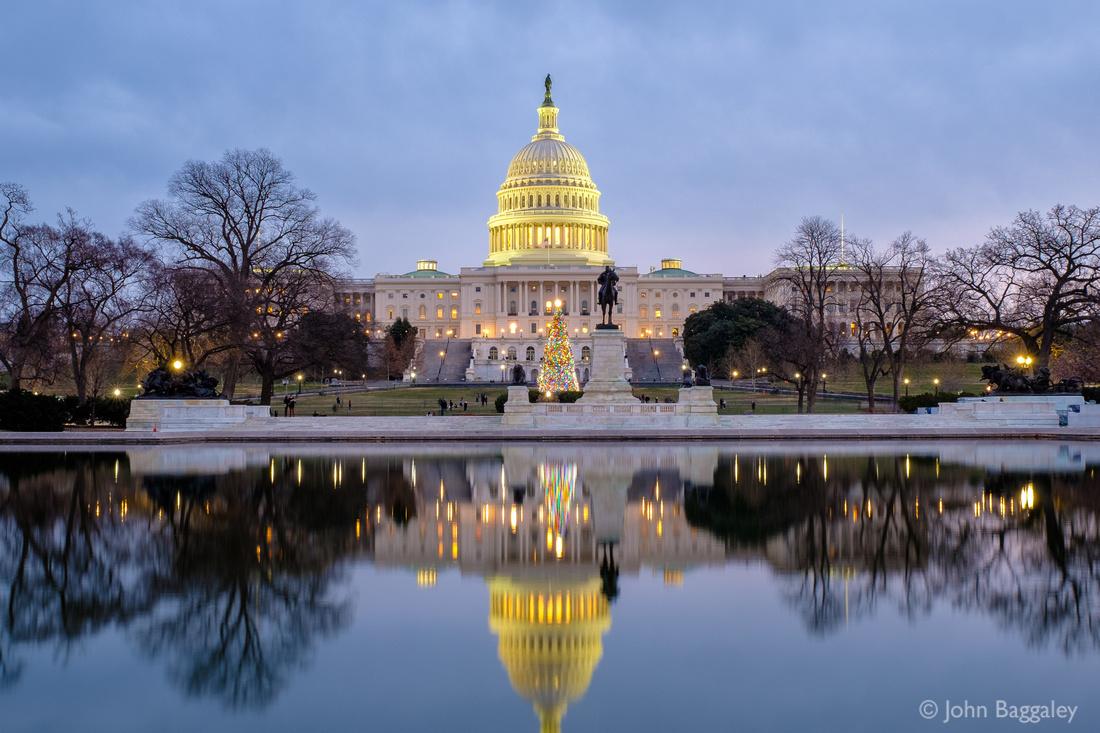 Nightfall on the 2017 Capitol Christmas Tree
