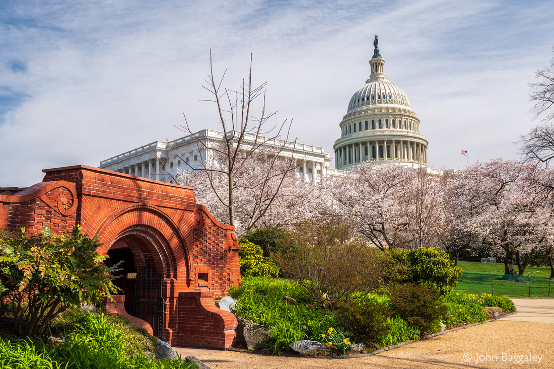Springtime at the Capitol